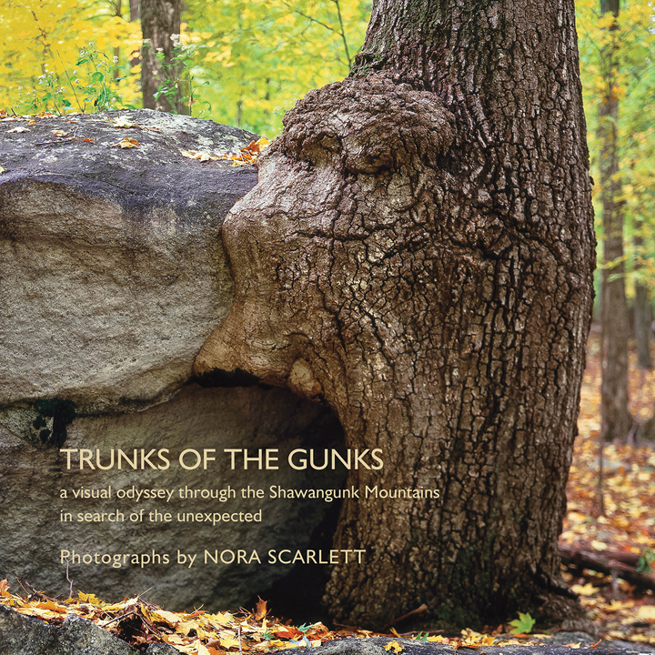 Trunks of the Gunks - Click Image to Close